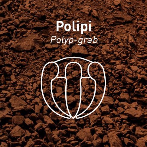 POLIPI